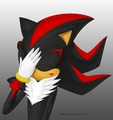 FACE PALM - shadow-the-hedgehog photo