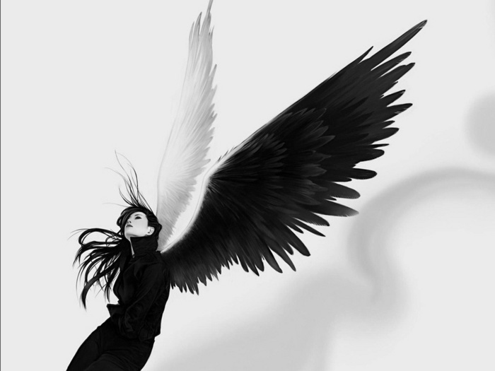 Fallen Angels images Fallen Angels wallpaper and background photos ...