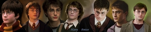 Harry James Potter wallpaper entitled Harry Potter through the ages