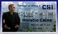 Horatio Caine