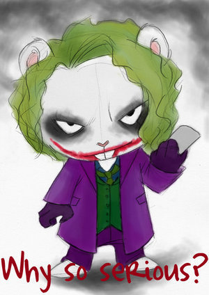 Joker Flippy