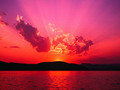 Look at the pretty sunset!**