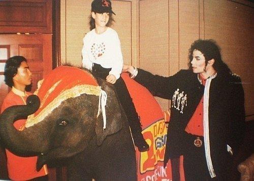 MJ/ éléphant