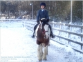 Me riding my share horse Conker - dressage photo