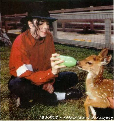 Michaels Little Friends~<3