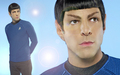Mr Spock - mr-spock fan art