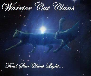 Our StarClan