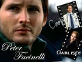 Peter Facinelli  The Dr. is IN - peter-facinelli wallpaper