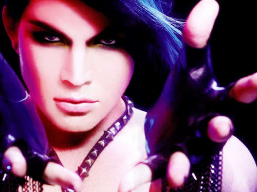 Sexy Adam 壁纸 2010!