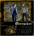 Twilight Desktop Calender - twilight-series photo