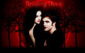 Twilight pics