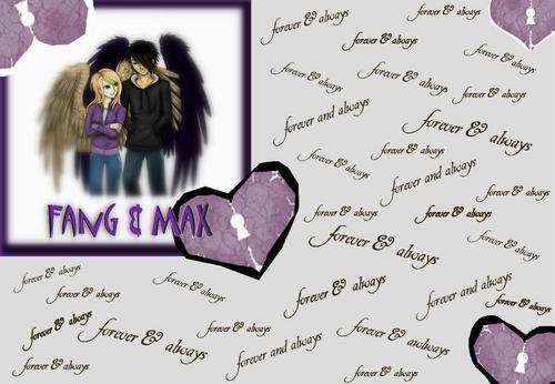 Maximum Ride wallpaper titled fang and max <3 fanart