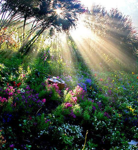 god sun rays