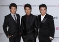 Elton John AIDS Foundation Academy Awards Party - 3/7 - the-jonas-brothers photo