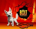 200th Bolt Picture!