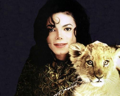 Large MJ foto's