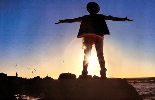 MJ pelangi, rainbow Silhouette