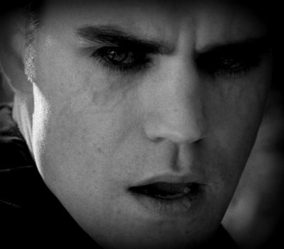 Vampire Diaries Books wallpaper entitled Stefan