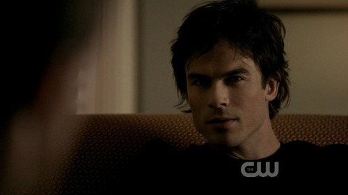 Damon Salvatore wallpaper titled The Vampire Diaries