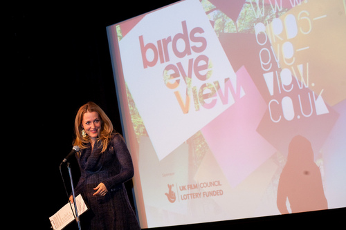 gillian anderson Birds eye view