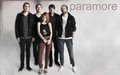 paramore! ♥ - brand-new-eyes wallpaper