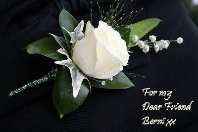 A Rose for a Rose , My Dear Berni xx