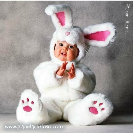 Cute Baby Bunnies Easter