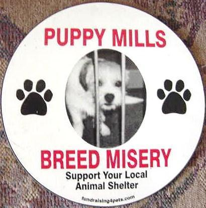 banning puppy mills Set to take effect in january that was aimed at targeting puppy mills  ban that  would be in favor of both pet shops and animal advocates.