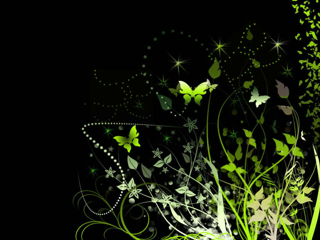 Butterflies At Night  Butterflies Wallpaper 10809099  Fanpop