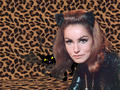 Catwoman - batman-the-original-series wallpaper