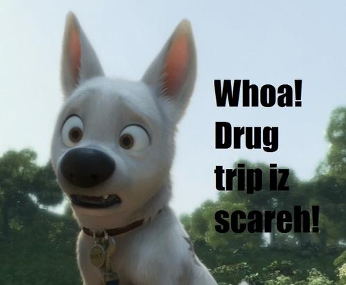 Drug Trip is Scareh