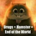 Drugs+Hamster