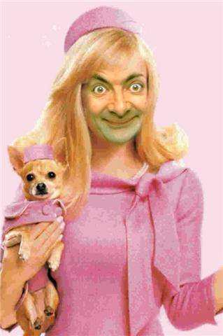 If Mr. frijol, haba was in Legally Blond