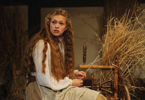 Julie Engelbrecht as Lisa