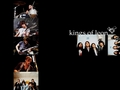 Kings of Leon. - kings-of-leon wallpaper