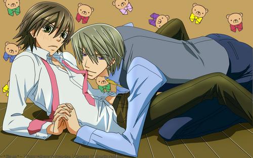 junjou romantica wallpaper titled Misaki and Akihiko