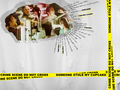 ncis - Someone stole my cupcake 1024x768 wallpaper