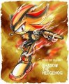 Super shadow!! - shadow-the-hedgehog photo