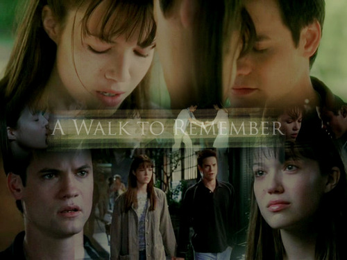 A Walk To Remember 壁紙