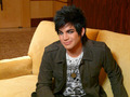 Adam Australia Photoshoot - adam-lambert photo