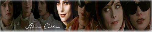 Alice Cullen banner