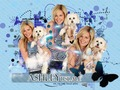 Ashley Tisdale - high-school-musical wallpaper