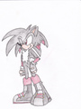 Atom the Hedgehog - boy-sonic-fan-characters photo