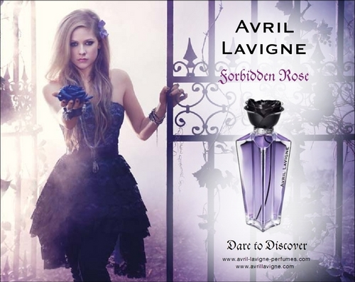 Avril Lavigne forbidden rose