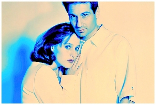 The X-Files fond d'écran called Best Gillan/David*Fox/Dana photoshoots