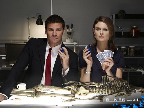 Temperance Brennan wallpaper called Bones