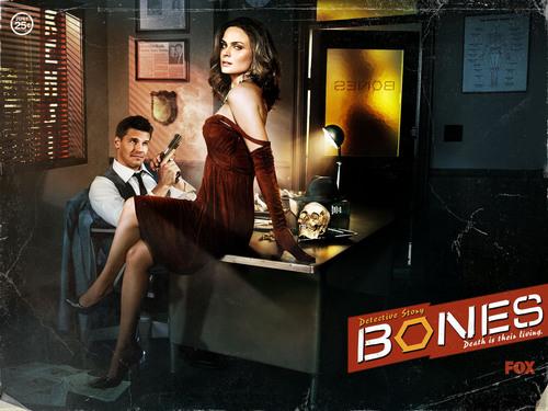 Temperance Brennan karatasi la kupamba ukuta entitled Bones