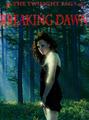 Breaking Dawn Poster - twilight-series photo