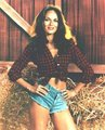Catherine Bach - fabulous-female-celebs-of-the-past photo