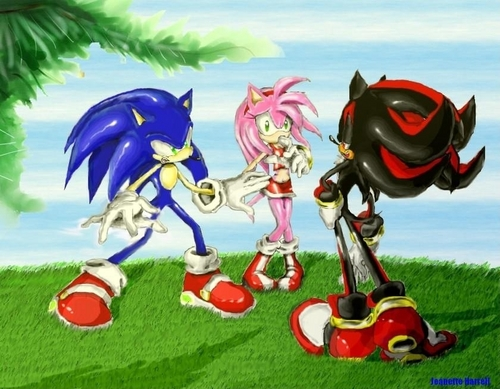 Fight For Amy's Love - shadow-the-hedgehog Fan Art